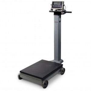 Portable Beam Scale