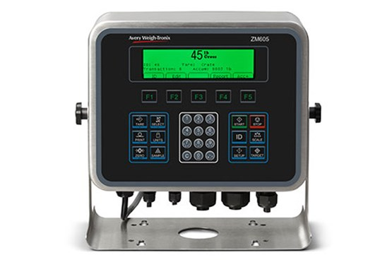 Weigh-Tronix ZM605 indicator for floor scales or clean, food environments